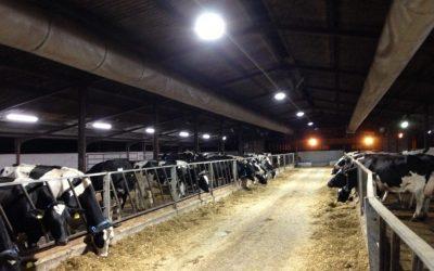 Lackham Farm and Estate – 71.7% Energy Reduction